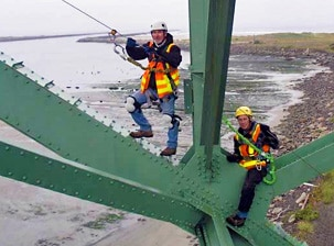 vertical bridge fall protection systems