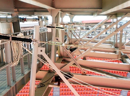 rigging grid lifelines