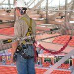 stadium and arena fall protection lifeline
