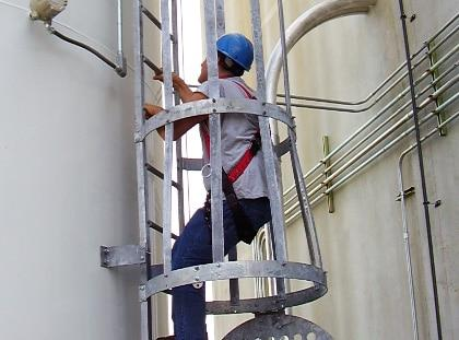 ladder and cage systems